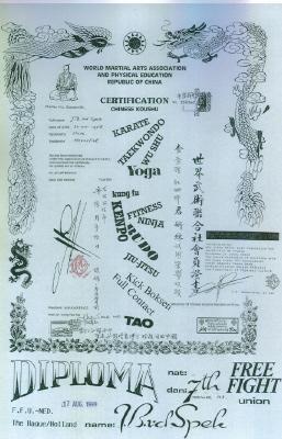 Certificaat Chinese Koushu