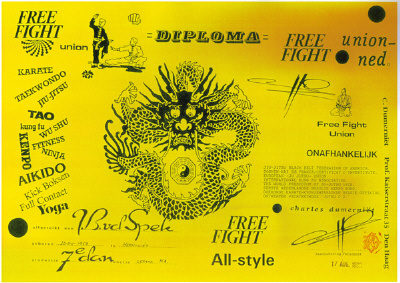 Diploma Free Fight All-style
